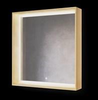 Зеркало Frame 75 Дуб сонома с подсветкой  (Fra.02.75/DS)