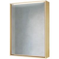 Зеркальный шкаф Raval Frame 60 с подсветкой